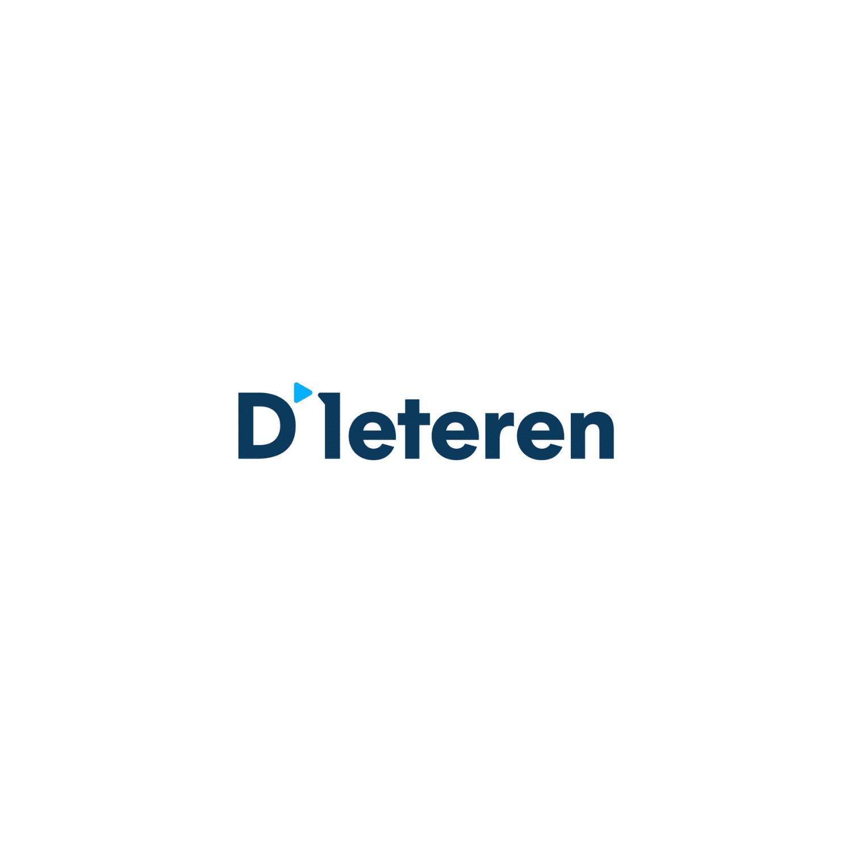d'iteren logo